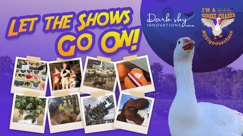 Let the Shows Go On! GooseChase: Join a gigantic FUN game using your mobile