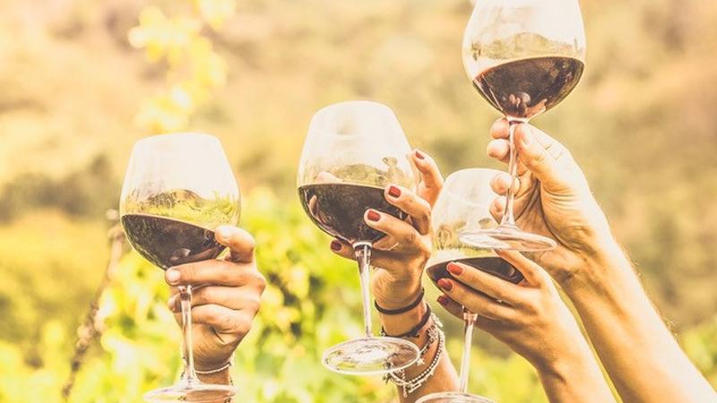 Mudgee Wine School in Focus - Italian Varietals