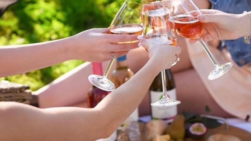 Mudgee Wine School in Focus - Rosé