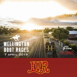 Wellington Boot Race Train
