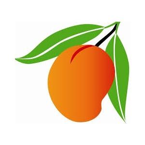 Mango Orders